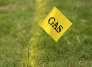 gas flag feature image