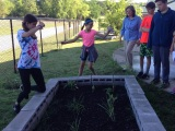 Williams supports STEM through outdoor classroom