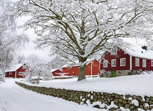 Characteristic Swedish settlement in winter season