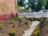 Rain garden provides beautiful, environmentally friendly solution
