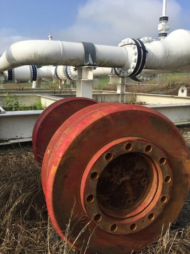 pipeline pig
