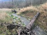Pipeline maintenance leads to stream restoration