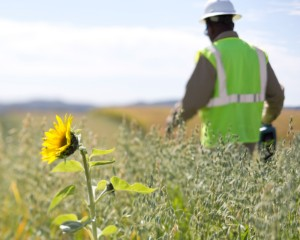 New report highlights sustainability efforts