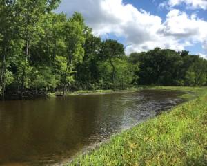 Environmental partnership enhances Texas Wildlife Management Area
